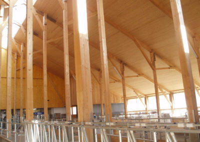 Innenansicht des fertigen Stalles von Holzbau Zimmerei Reichart